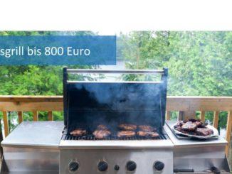 Gasgrill bis 800 Euro